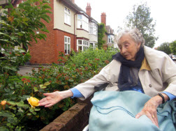 Gardening at Care Home